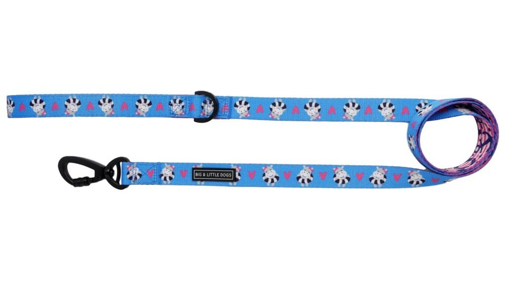 Big-and-Little-Dogs-Comfort-Dog-Leash-Feeling-Nauti-Front