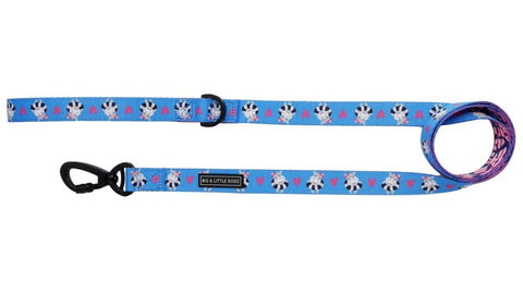Image of Big-and-Little-Dogs-Comfort-Dog-Leash-Feeling-Nauti-Front