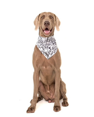 Image of Big-and-Little-Dogs-Cooling-Neckerchief-Bandana-Black-and-White-Birthday-Hank