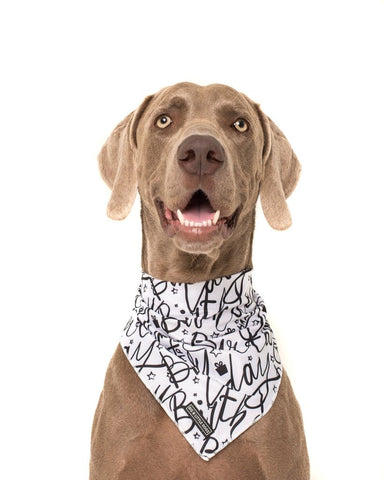 Image of Big-and-Little-Dogs-Cooling-Neckerchief-Bandana-Black-and-White-Birthday-Hanke-2