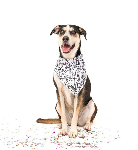 Image of Big-and-Little-Dogs-Cooling-Neckerchief-Bandana-Black-and-White-Birthday-Luna