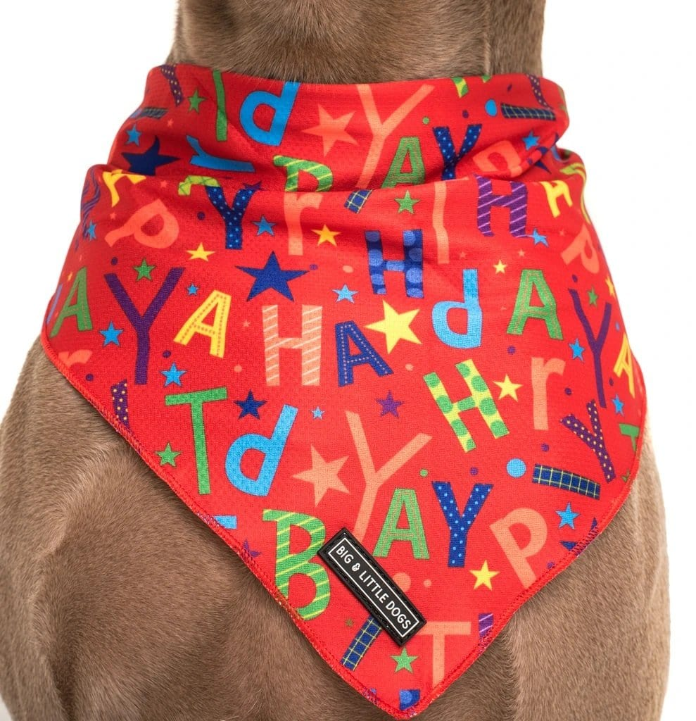 Big-and-Little-Dogs-Cooling-Neckerchief-Bandana-Red-Birthday-Close-Up