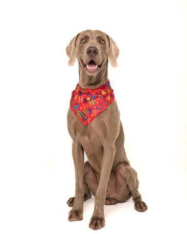 Image of Big-and-Little-Dogs-Cooling-Neckerchief-Bandana-Red-Birthday-Hank