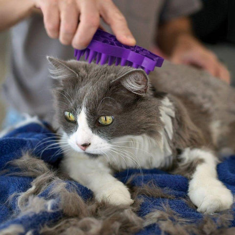 Image of KONG Cat ZoomGroom