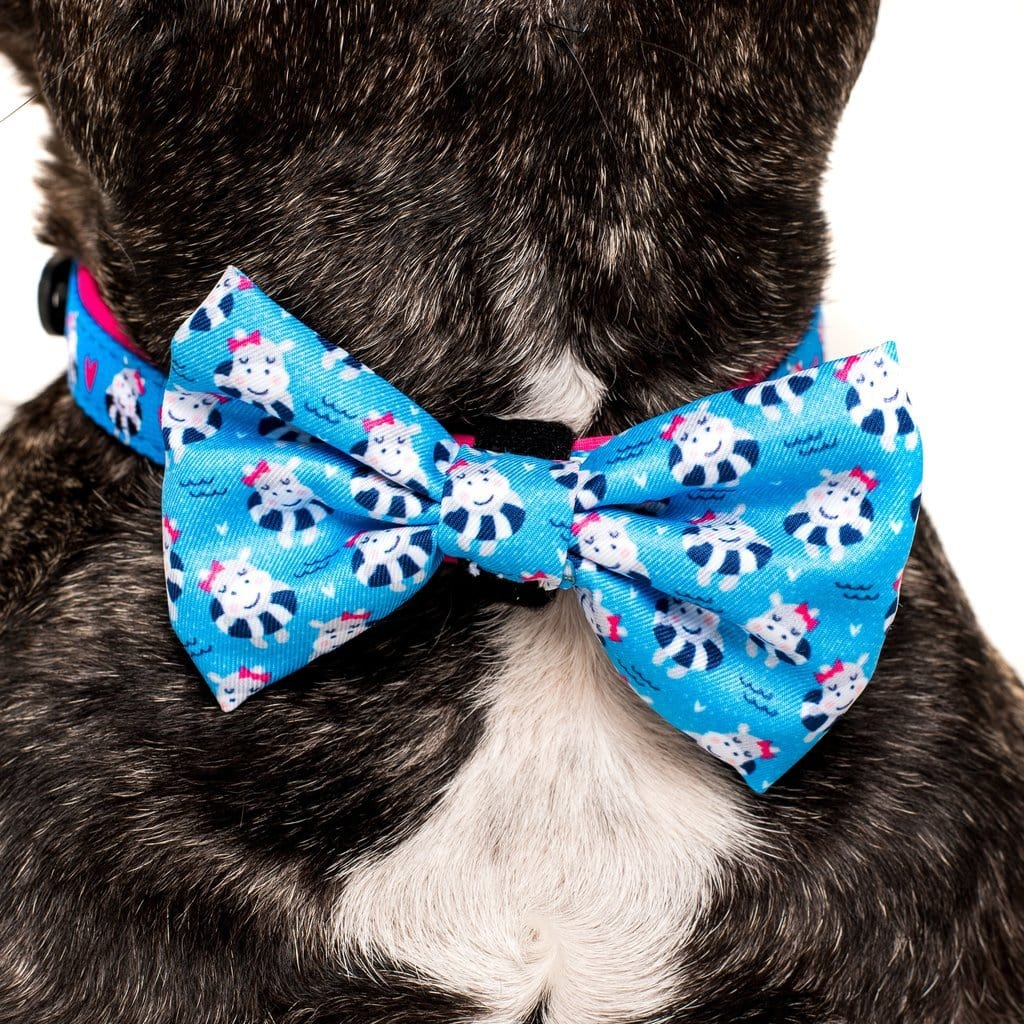 Big-Little-Dogs-Comfort-Dog-Collar-and-Bow-Tie-Feeling-Nauti
