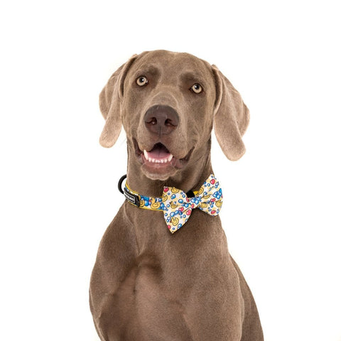 Image of Big-Little-Dogs-Comfort-Dog-Collar-and-Bow-Tie-Rubber-Duck-Hank-2