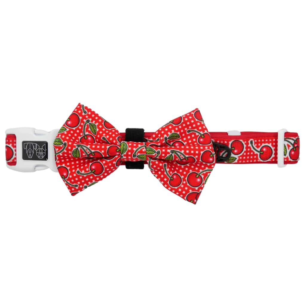 Big-Little-Dogs-Big-Little-Dogs-Comfort-Dog-Collar-with-Bow-Tie-Cherrylicious-3