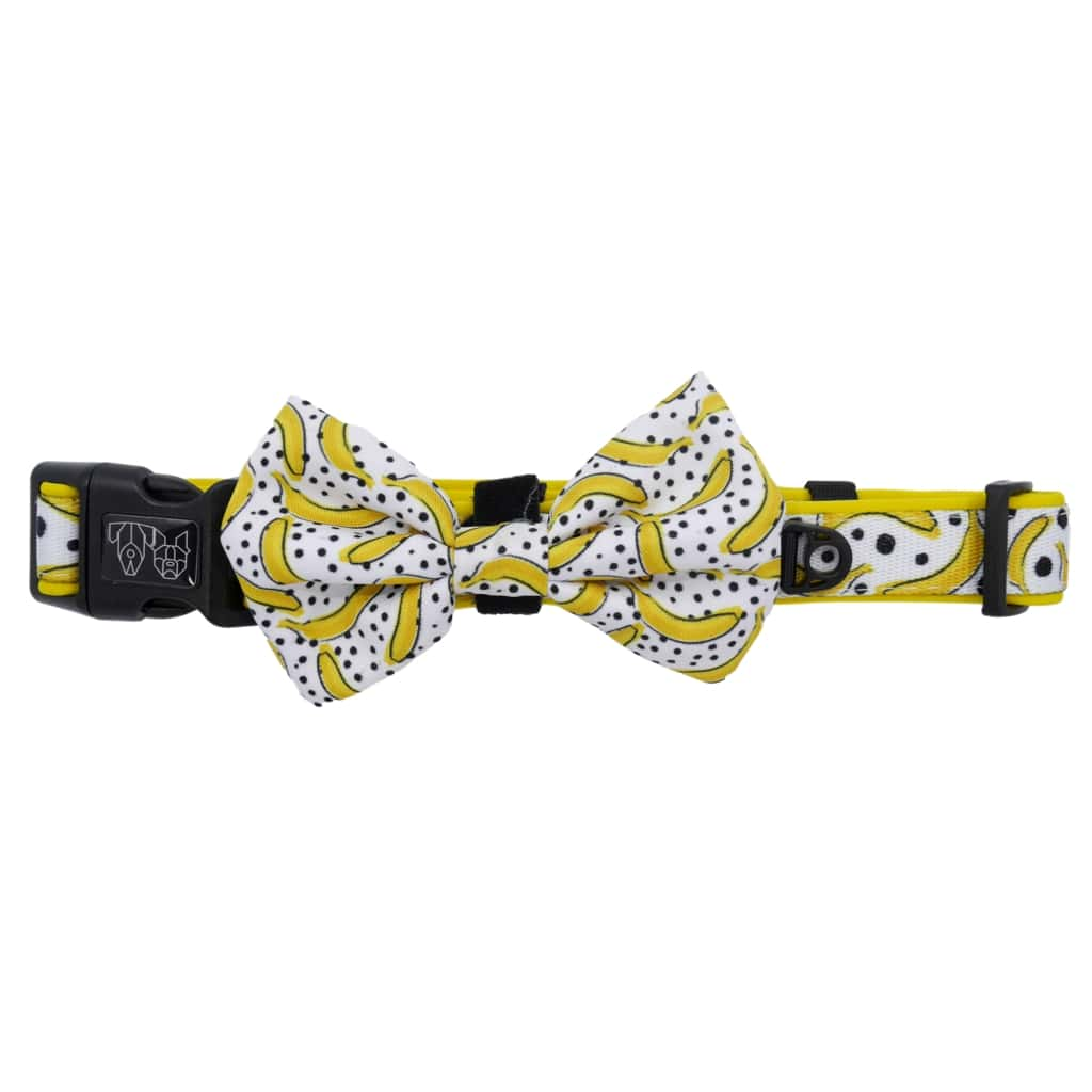 Big-Little-Dogs-Comfort-Dog-Collar-with-Bow-Tie-Going-Bananas-3