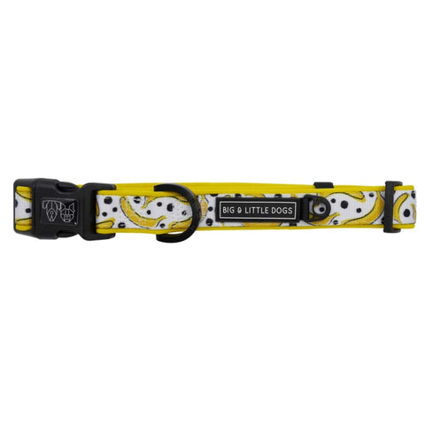 Image of Big-Little-Dogs-Comfort-Dog-Collar-with-Bow-Tie-Going-Bananas