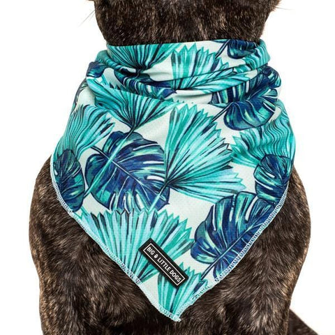 Image of Big-Little-Dogs-Cooling-Dog-Neckerchief-Bandana-Miami-Summer_grande