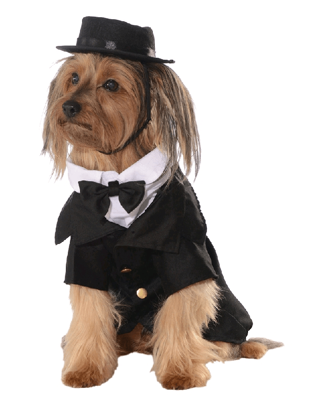 Dapper Pet Dog Big Dog Costume