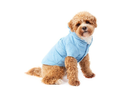 Image of Big-Little-Dogs-Dog-Bath-Robe-Baby-Blues-Harvey-1