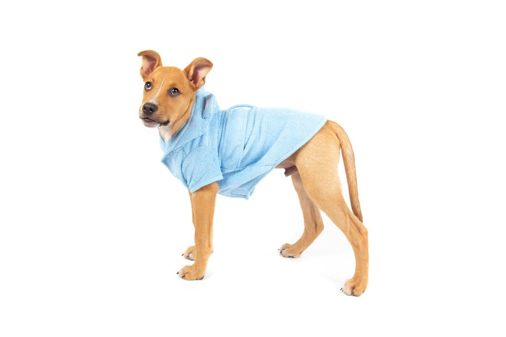 Big-Little-Dogs-Dog-Bath-Robe-Baby-Blues-Moochi-2