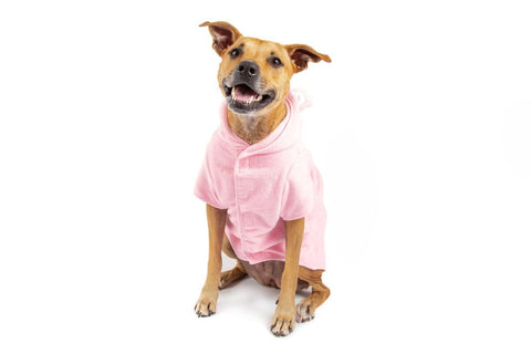 Image of Big-Little-Dogs-Dog-Bath-Robe-Pretty-In-Pink-Kiba-3