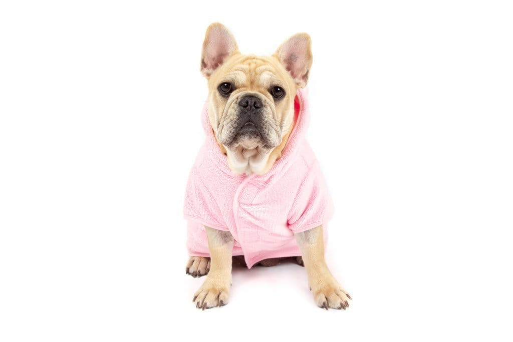 Big-Little-Dogs-Dog-Bath-Robe-Pretty-In-Pink-Lucy-1