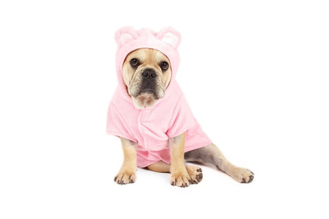 Image of Big-Little-Dogs-Dog-Bath-Robe-Pretty-In-Pink-Lucy-2