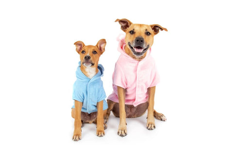 Image of Big-Little-Dogs-Dog-Bath-Robe-Pretty-In-Pink-and-Baby-Blues-Kiba-and-Moochi-1