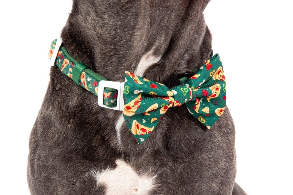 Big-Little-Dogs-Dog-Collar-and-Bow-Tie-Pupperoni-Pizza-Close-Up