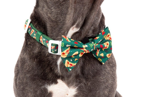 Image of Big-Little-Dogs-Dog-Collar-and-Bow-Tie-Pupperoni-Pizza-Close-Up