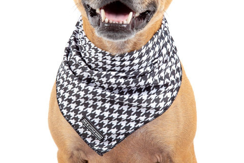 Image of Big-Little-Dogs-Dog-Cooling-Bandana-Houndstooth-Squad-Close-Up