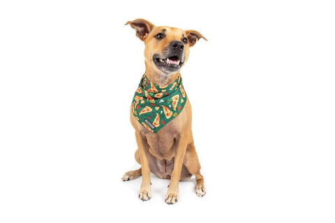 Image of Big-Little-Dogs-Dog-Cooling-Bandana-Pupperoni-Pizza