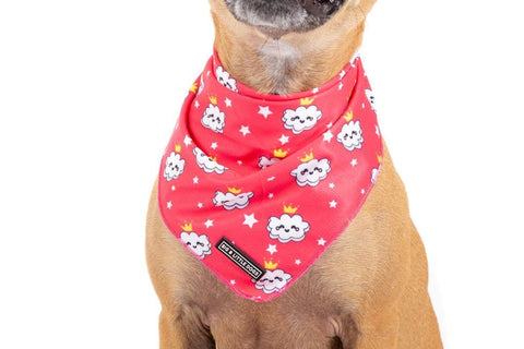 Image of Big-Little-Dogs-Dog-Cooling-Bandana-Queen-of-the-Clouds-Close-Up