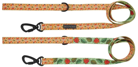 Image of Big-Little-Dogs-Dog-Leash-Feeling-Foxy-Autumn-Leaves-01