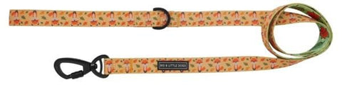Image of Big-Little-Dogs-Dog-Leash-Feeling-Foxy-Front_grande