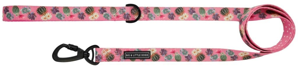 Big-Little-Dogs-Dog-Leash-Plant-One-On-Me-Front