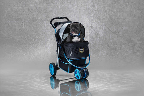 Monarch Premium Pet Jogger - Blue