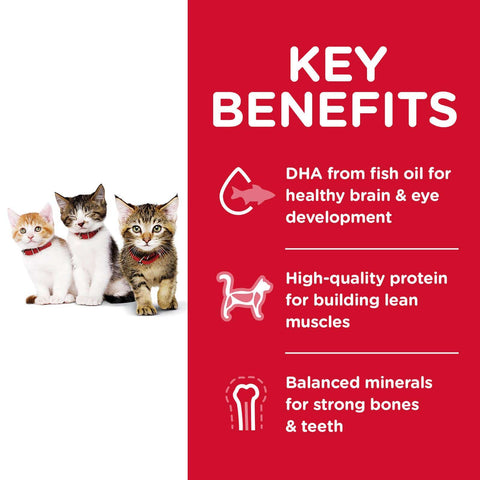 Image of Hill's Kitten Dry Cat Food Chicken Recipe Key Benefits