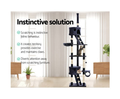 cat-tree-260cm-blue Afterpay ZipPay Australia Melbourne Sydney Adelaide Gold Coast