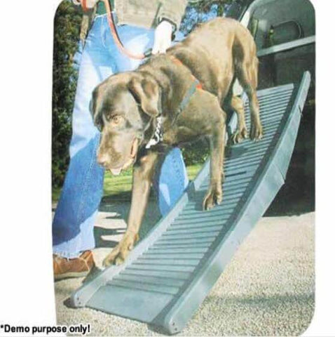 Image of Paws N Claws Folding Dog Car Ramp with Pet Dog