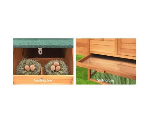 Pet Hutch with Easy Access Nesting Box