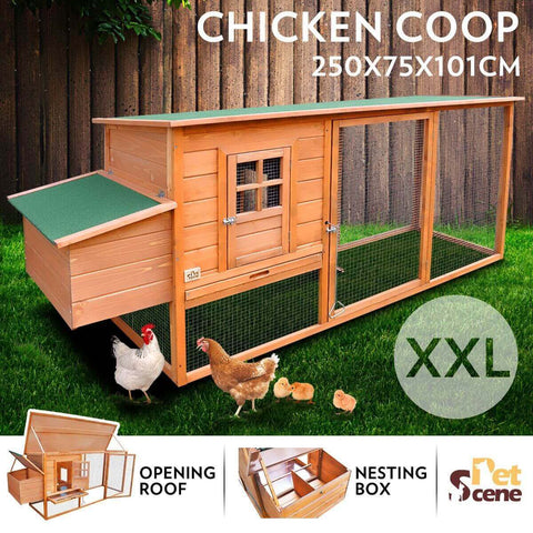 Image of Quality Fir Chicken Coop House Outdoor W/ Spacious Play Area Pet Rabbit Ducks Guinea Pigs Chicken Cage Nesting Box