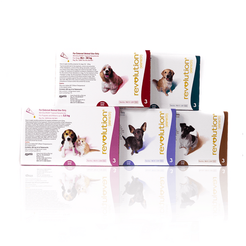 Image of Revolution Flea & Worm Treatment for Dogs - Tubes