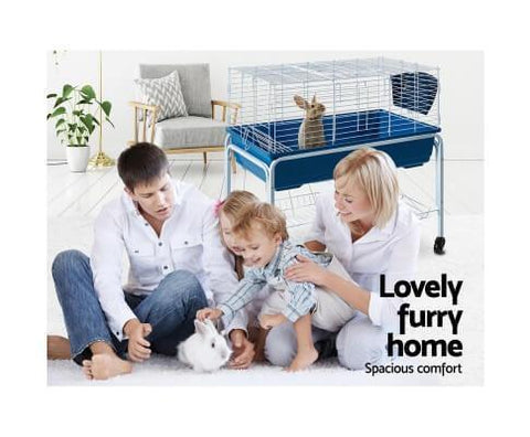 Image of Spacious Secure Environment For Small Pet Animals