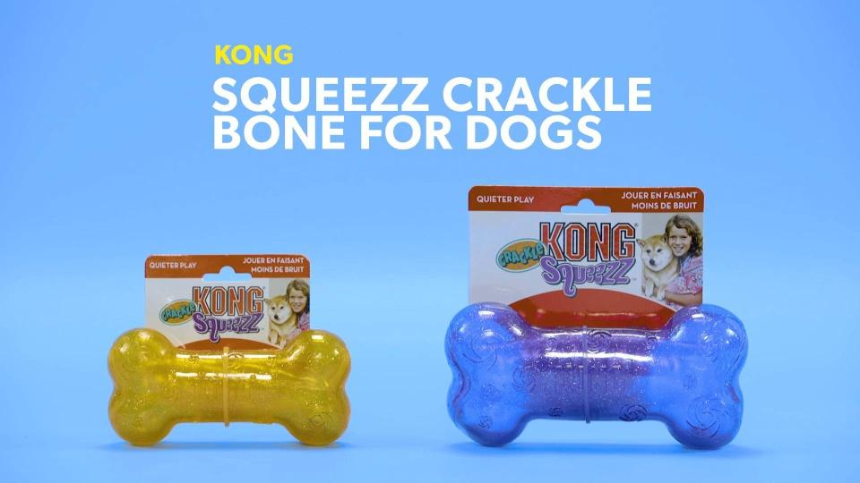 KONG Squeezz Crackle Bone Dog Toy