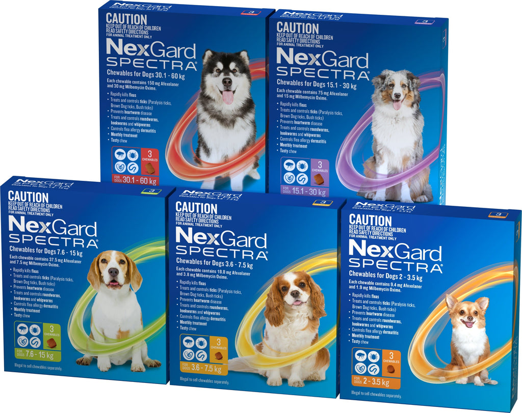 Nexgard Spectra Ulitmate Protection Flea & Worming for Dogs - Chewable