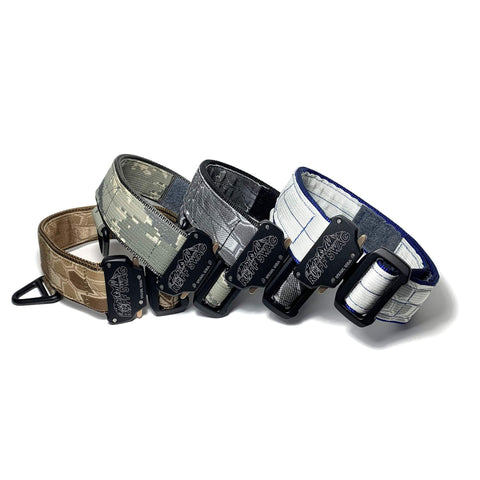 "1.75"" RS Accent Tactical Collar with Custom Embroidery"