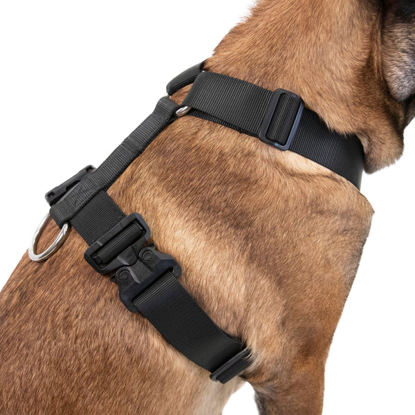 Ruff Swag Adult Dog Harness