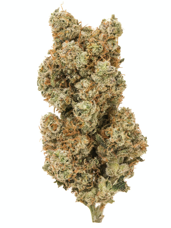 STMS WLLNESS Sun Grown Flower BERRY WHITE (Hybrid/Indica)