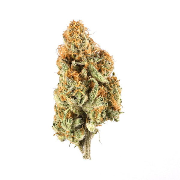 GLXY Flower ORANGE CREAMSICLE (Indica)