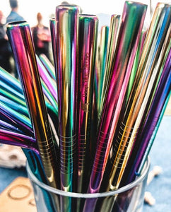 4 x Rainbow Stainless Steel Straw