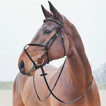 Beautiful chestnut horse modeling a brown leather figure eight english bridle with a loose ring bit.