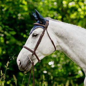 White horse wearing a brown english bridle with a Dee bit and wearing a dark fly bonnet.