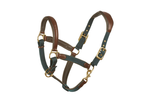 Brown leather combined with hunter green nylon horse halter with brass fittings.