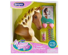 Breyer light brown horse head with a long blond mane so that kids can brush and braid.  Displayed in box along with accessories styling tools