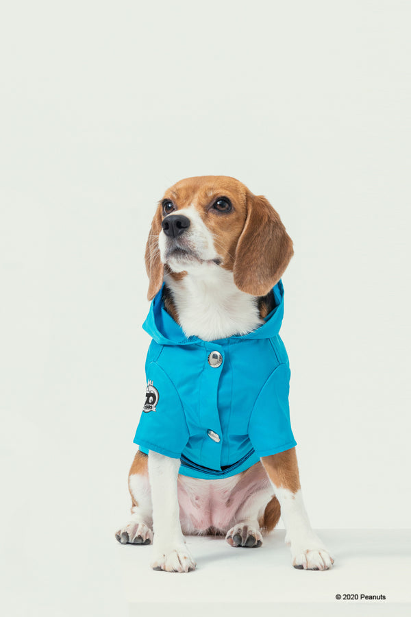 PEANUTS-SNOOPY RAINCOAT-BLUE
