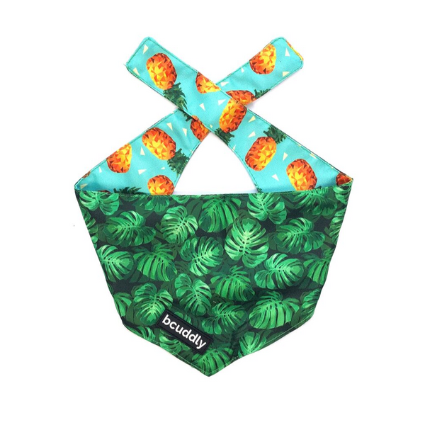 Dog bandana - Pineapple Party